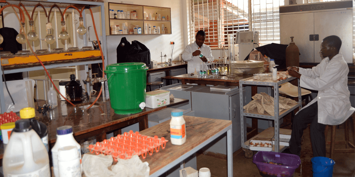 Grad students in lab LUANAR